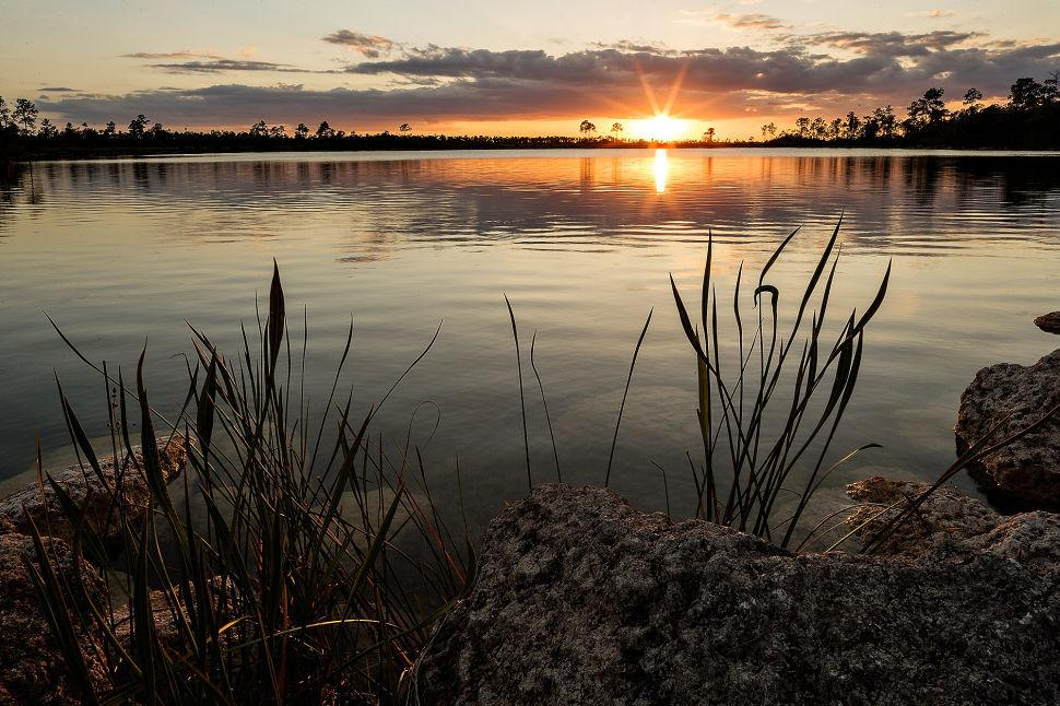 Pine Glades Lake Sunset ENP