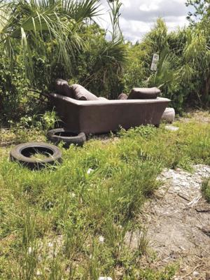 Dumping is prevelant anywhere you drive in the Redland.  Two piles of furniture, tires, and trash have been dumped on the greenspace.