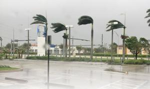 Largo Honda dealership weathers the hurricane force winds