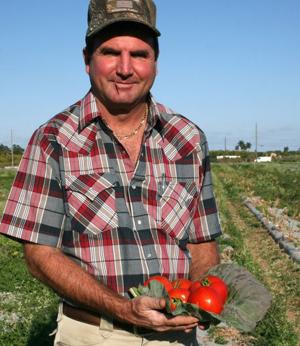 Kern Carpenter at his tomato farm.