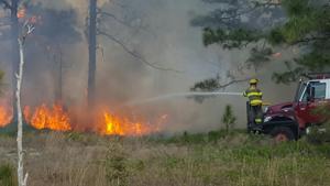 Rainy Season Douses Fiery Florida