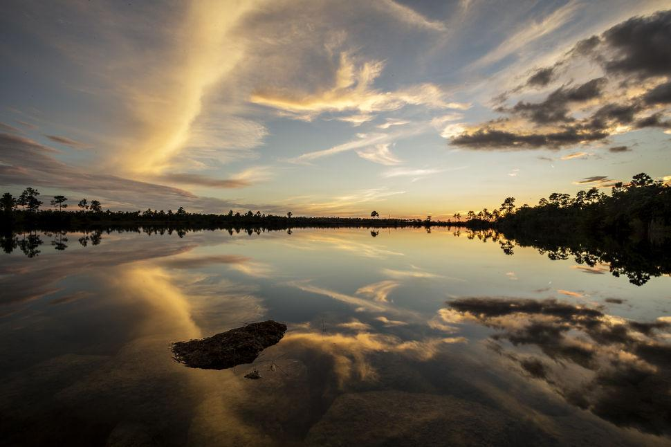 Pine Glades Lake Sunrise