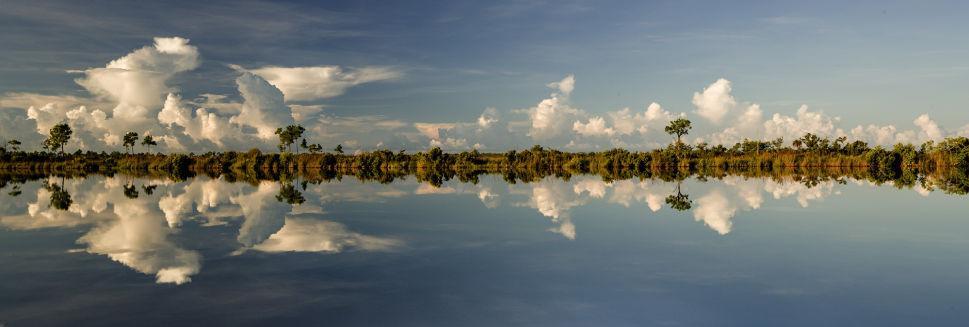 Sisal Pond