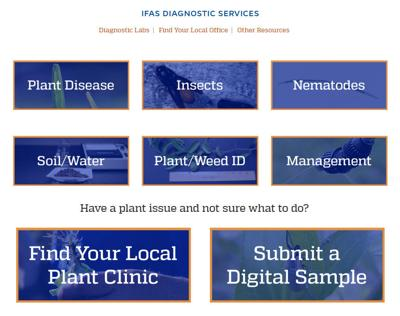 IFAS Diagnostic Services website
