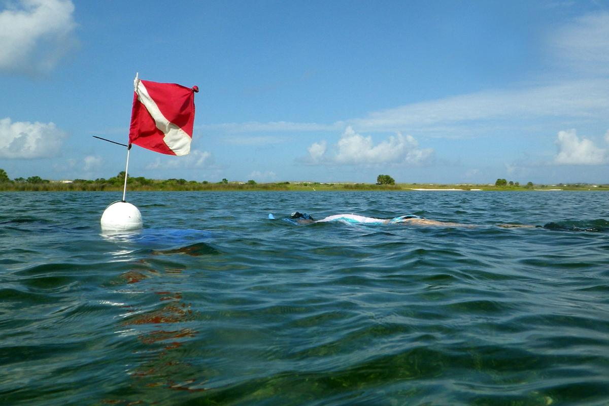 Diving or Snorkeling? Make sure you use a dive flag to alert other boaters in area.