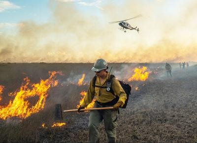 Firefighters monitor a prescribed burn in early 2020 on a freshwater prairie while a helicopter monitors from above.  Photo: NPS/Ian Wilson