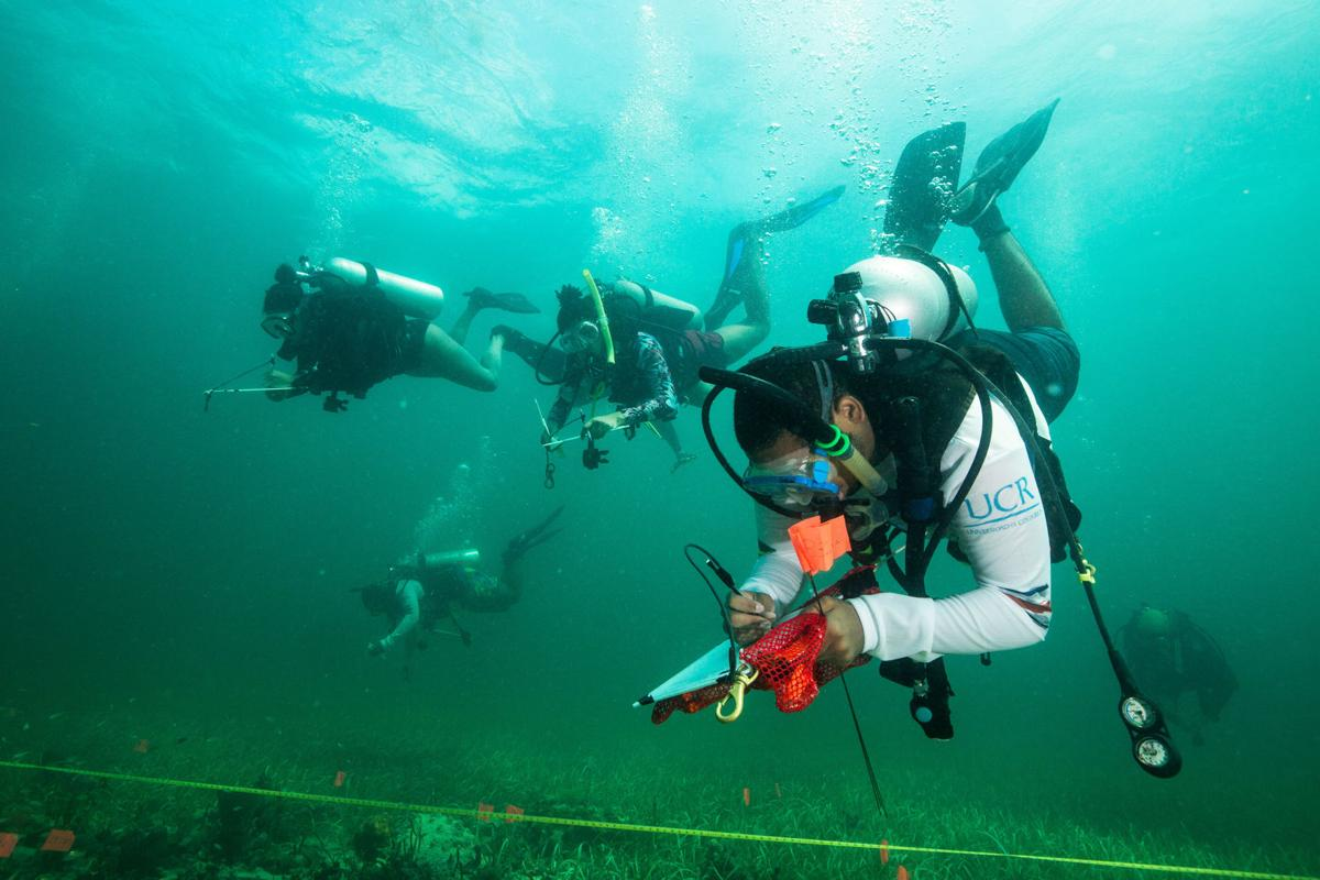 """YDWP students must properly """"hover"""" underwater to avoid damaging the fragile site they are helping to document."""