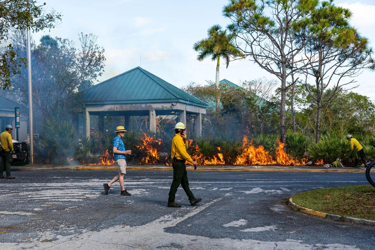 Park Rangers were on hand to explain the burn plan to visitors.