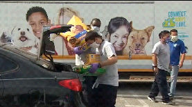 Family Dogs and Cats Helped with Pet Food Giveaways