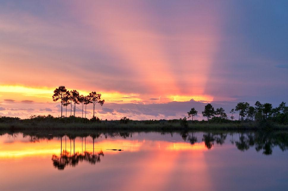 Pine Glades Lake ENP