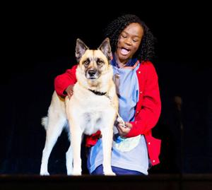 Janaya Fedler, the star of Seminole Theatre Players' Annie, The Broadway Musical.