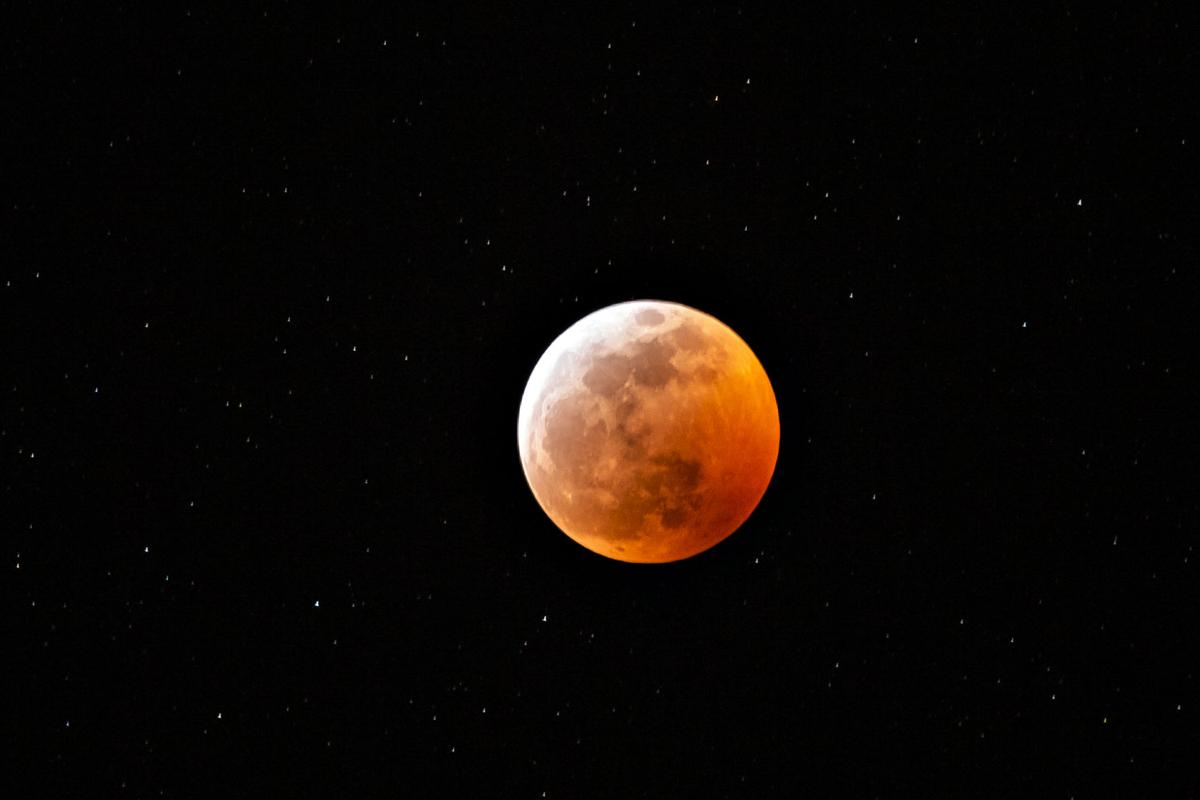 Super Wolf Blood Moon over the Everglades