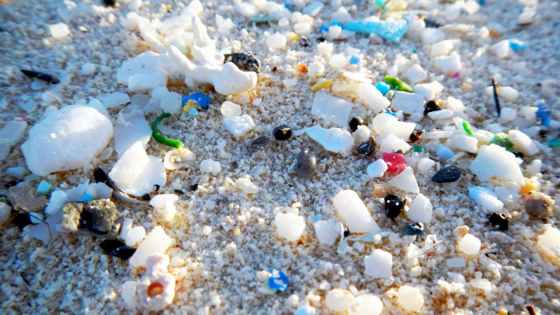Microplastics and plastic debris is becoming a major problem on  beaches around the world                (NOAA)
