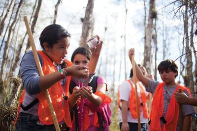 Kids Explore The Everglades