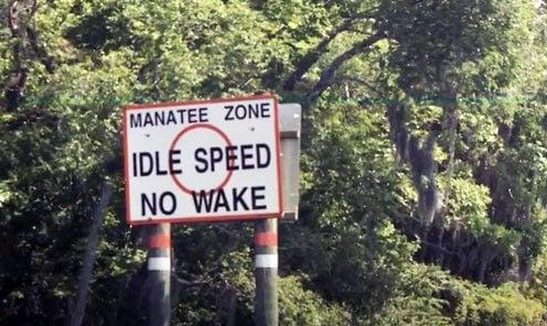 Idle Speed
