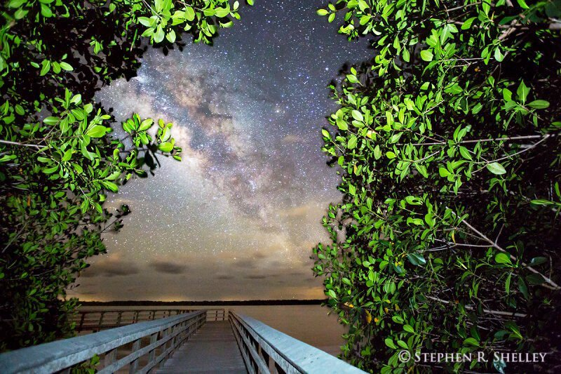 An evening in the Everglades - Milky Way West Lake.