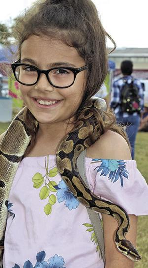 Cynthis Petit, 9, with a Ball Python from Everglades Alligator Farm