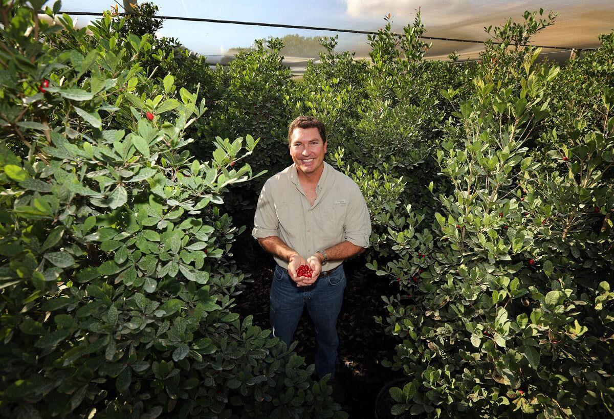 Eric Tietig at his Miracle Fruit Farm, in the Redland, where he is co-owner and CEO.