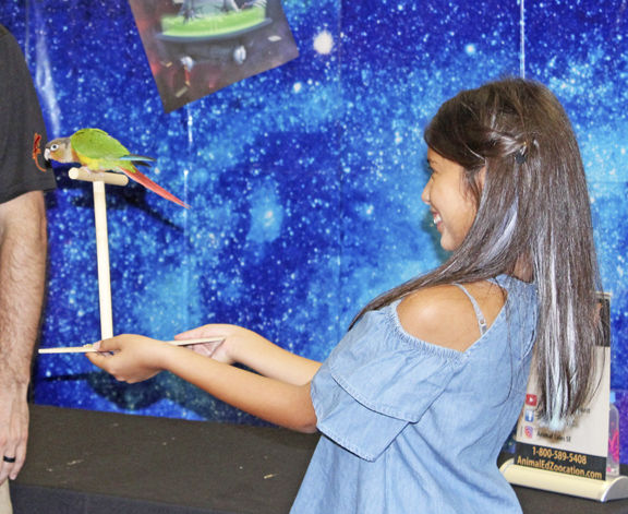 Library sees 'out-of-this-world' entertainment, creatures