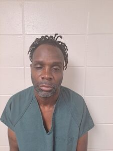 Elba man charged with murder