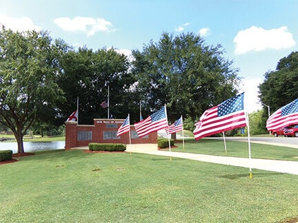 Flags leading to Wall of Freedom