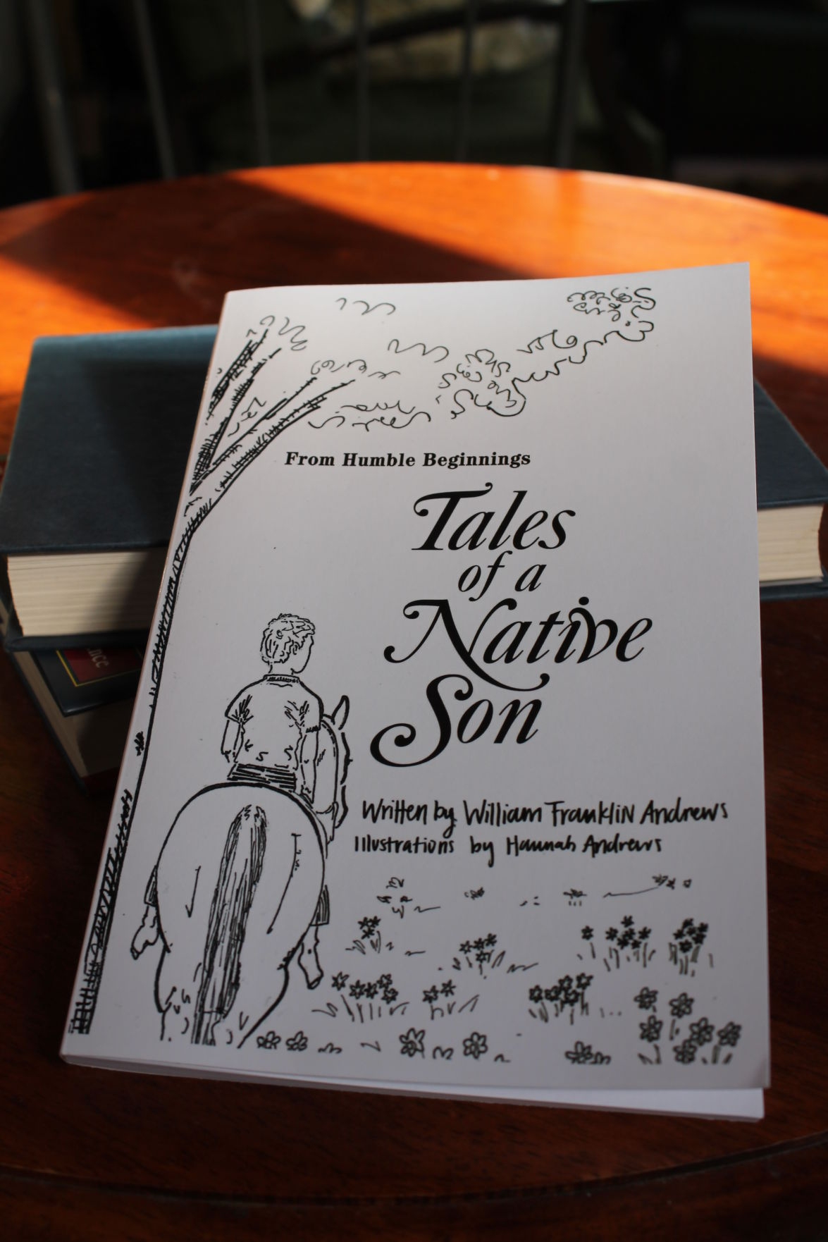 Tales of a Native Son
