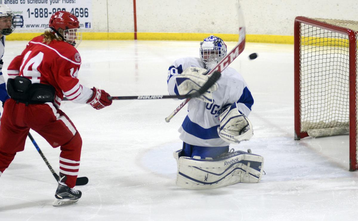 Bulldogs boys hockey upsets Luverne 3-2