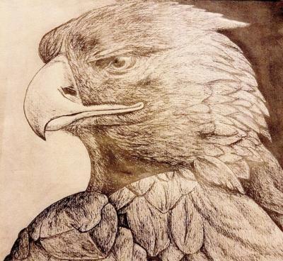 Jack Prehn's 'Eagle' named winner (copy)