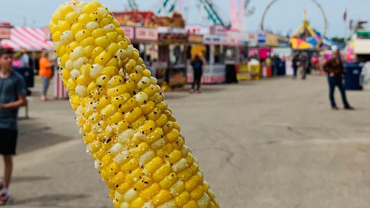 Southern Minn Scene Editor's Choice: County Fair and World Food/Brews