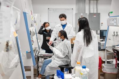 Lab scientists