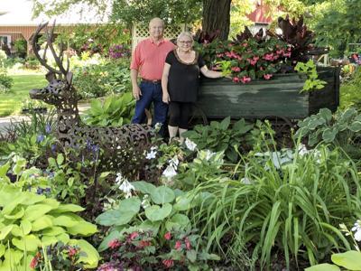 Hoban garden