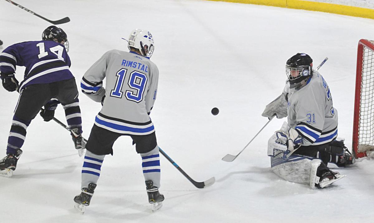 Bulldogs boys hockey challenges New Ulm but falls 3-1