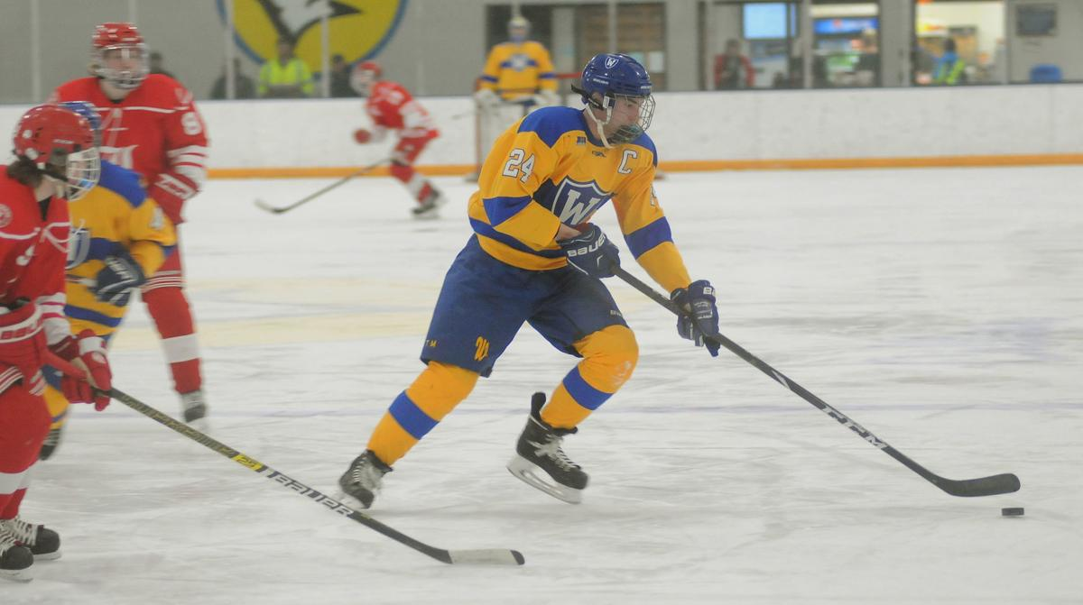 Boys hockey: Waseca runs win streak to four with win over Luverne