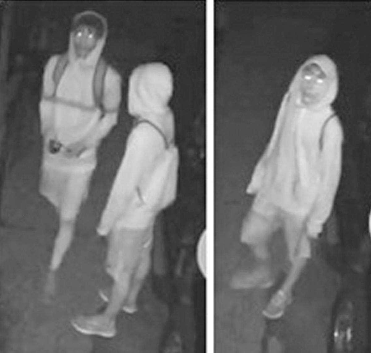 Faribault police need help to ID burglary suspects