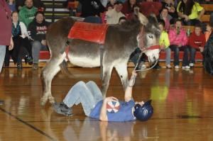 Donkey Basketball Fundraiser Huge Success At Kenyon