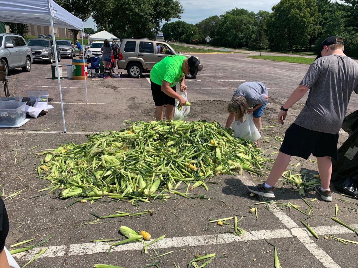 Corn giveaway