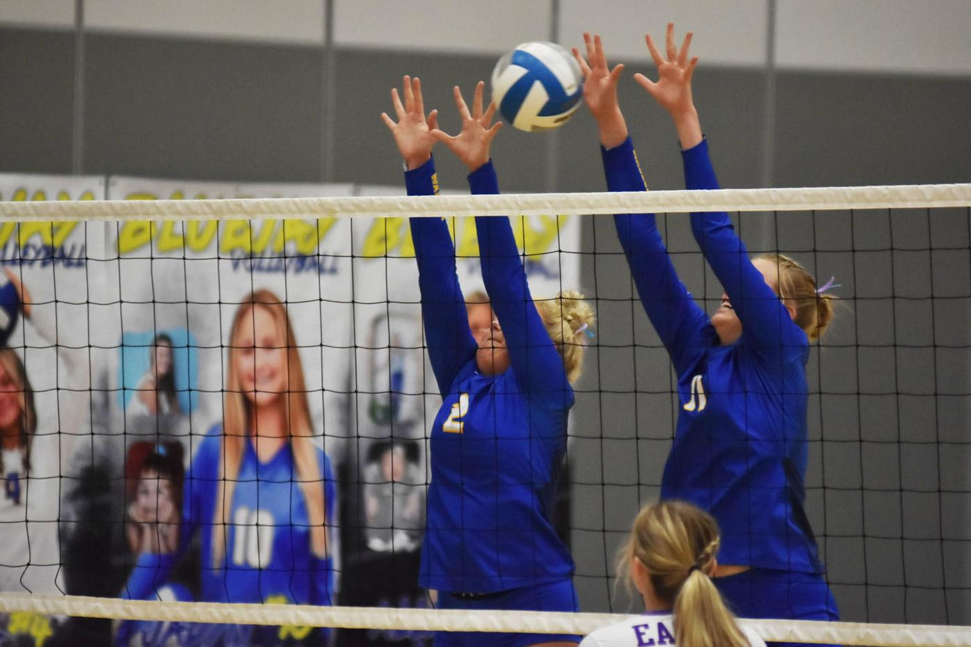 Potter and Wadd NEW (Waseca VB).jpg