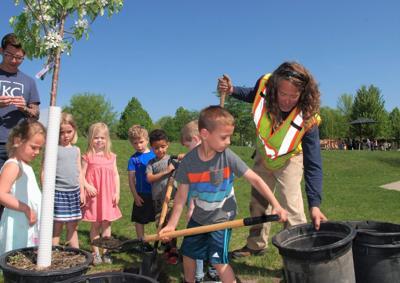 Nicollet County SWCD Tree Program