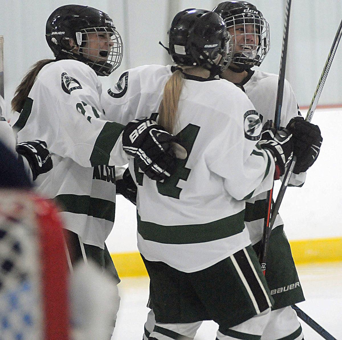 Faribault girls hockey