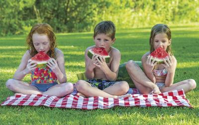 Watermelon eating