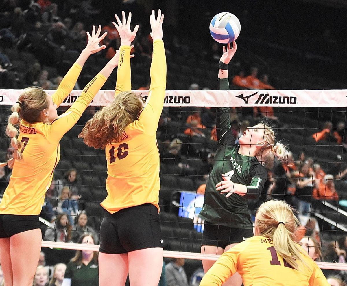 All-conference honors awarded, Donahue named Gopher Conference Player of the Year