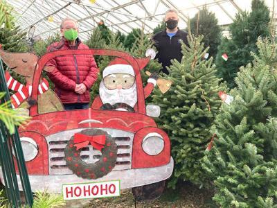 Turtle Creek Nursery Christmas tree sales to benefit Owatonna Foundation