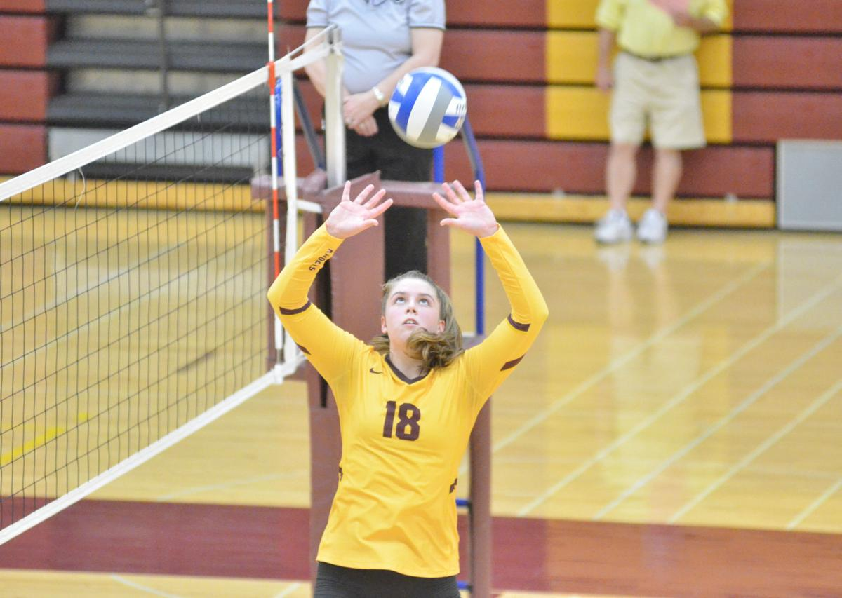 King's deliveries helping fuel Northfield volleyball