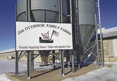 o'connor family farms