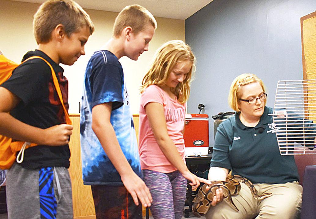 Pythons, tarantulas and bats, oh my: Minnesota Zoomobile visits Kenyon
