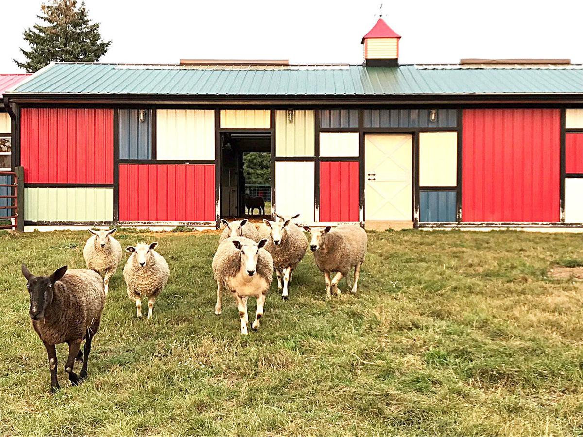 Area fiber farms open their doors for weekend tour