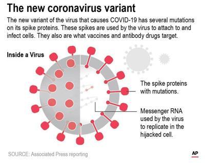 Virus Outbreak-New Variants