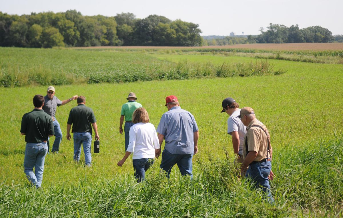 Buffer Field Day 1