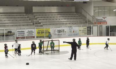Faribault youth hockey