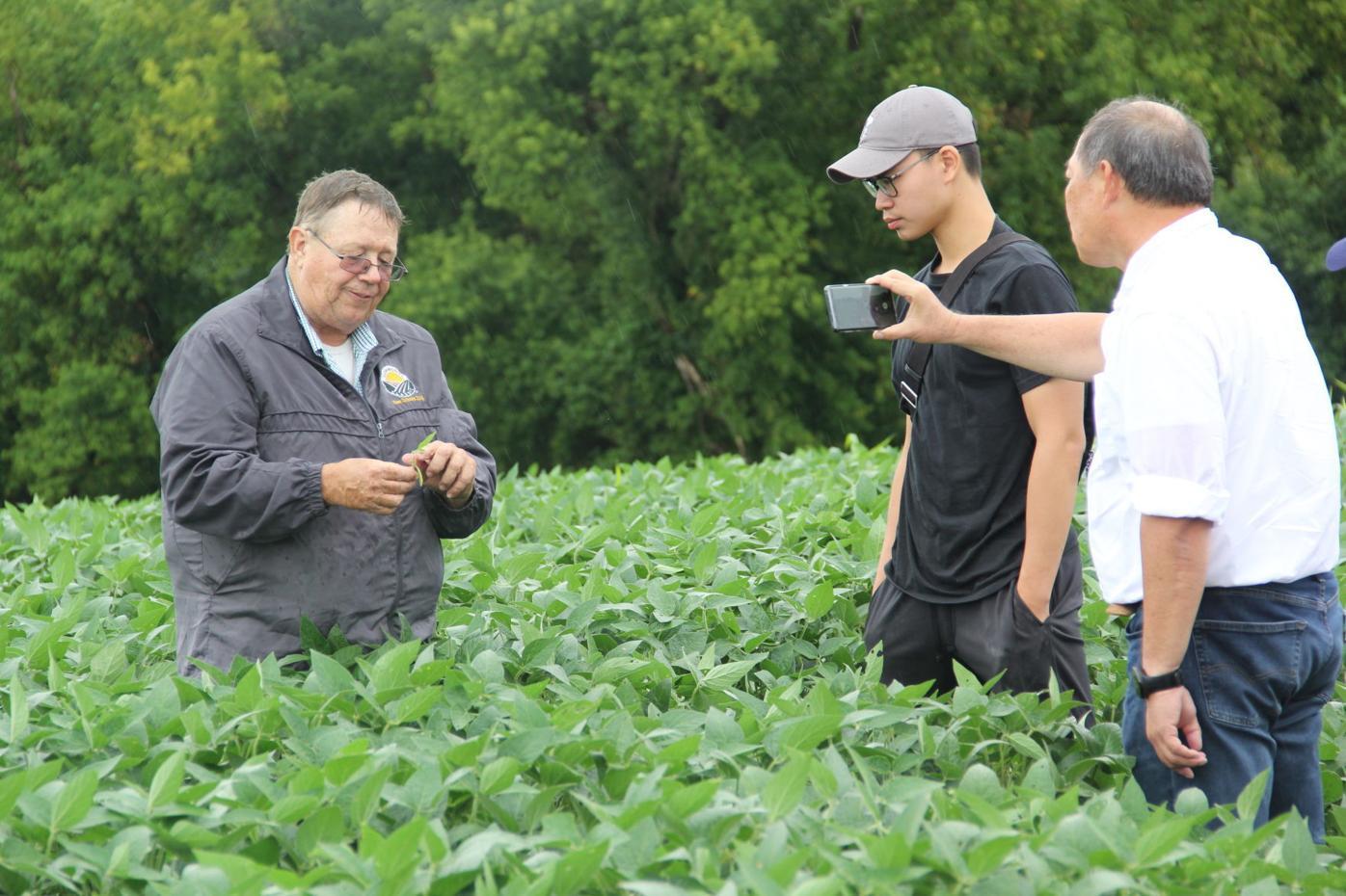 Soybean tour